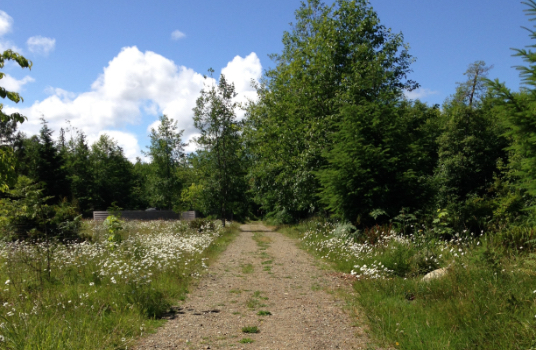 Denman Island Natural Burial Cemetery, British Columbia